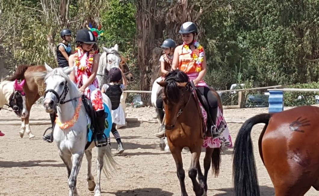 centre equestre et poney club